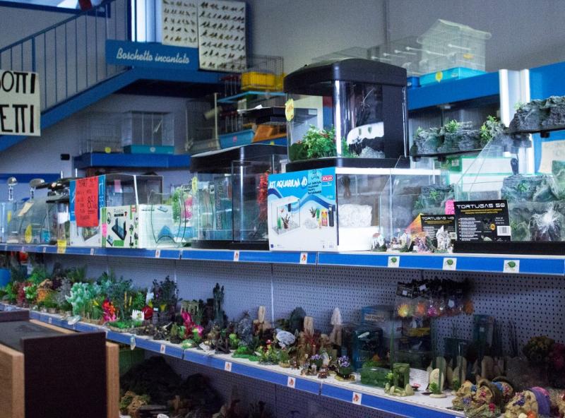 Acquari e accessori tecnici negozio con prodotti per for Filtro vasca pesci rossi