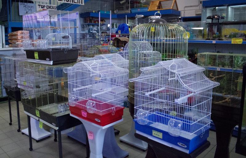Prodotti per uccelli e roditori negozio con prodotti per - Vitamine per cocorite ...