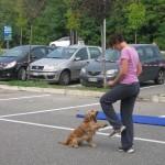 dog dance_5