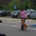 dog dance_8