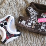 pettorine natalizie  per cani 2- Il Punto Naturale 2
