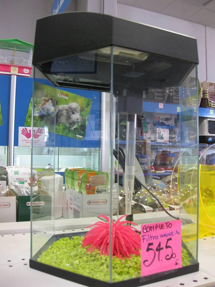 Mini acquari negozio con prodotti per tutti gli animali for Acquari nuovi in offerta