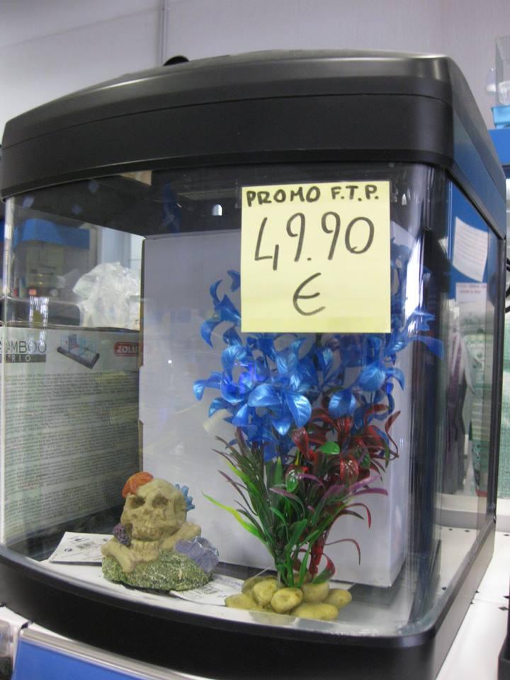 Mini acquari negozio con prodotti per tutti gli animali for Acquario angolare